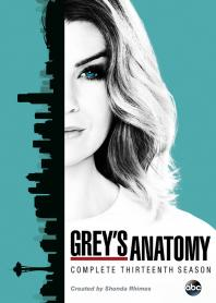 Inlay van Grey's Anatomy, Seizoen 13