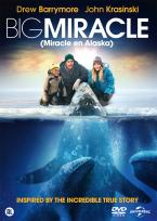Inlay van Big Miracle