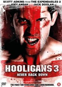 Inlay van Hooligans 3