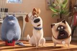 Screenshot van The Secret Life Of Pets