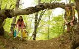 Screenshot van Moonrise Kingdom