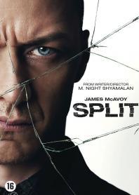 Inlay van Split