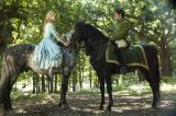 Screenshot van Cinderella